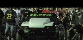 The Animal vs Procharged Camaro at Doomsday No Prep