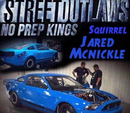 Jared Mcnickle Squirrel